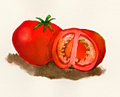 Tomatoes (illustration)