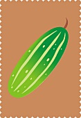 A cucumber (illustration)