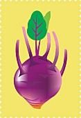 A purple kohlrabi (illustration)