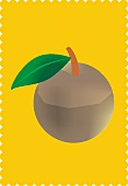 A sapodilla with a leaf against a yellow background (illustration)