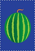 A watermelon against a blue background (illustration)