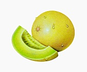 A honeydew melon and a wedge of melon (illustration)