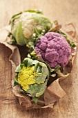 A trio of cauliflowers: white, purple and green