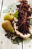 Elderberries, apple and pears