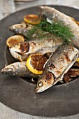 Fried fish with lemon and dill
