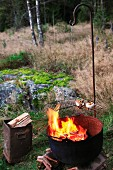 Food on grill over blazing fire in cauldron next to metal can of firewood in woodland clearing