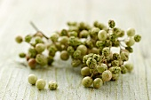 Bunches of green peppercorns