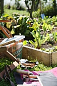 Garden tools and a garden chair next to a raised vegetable plot with a wooden surround