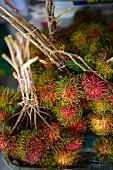 Bunches of rambutan