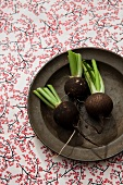 Three round, black winter radishes on an old plate
