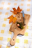 Milk cap mushroom stem with moss, bits of soil, knife and autumn oak leaves