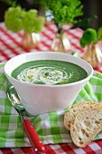 Cream of spinach soup with cashew purée and olive oil