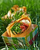 A wrap filled with tomato and mozzarella in a take-away box in the grass