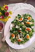 Lamb's lettuce salad, artichokes, asparagus and eggs