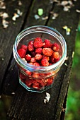 Freshly picked wild strawberries in a screw-top jar