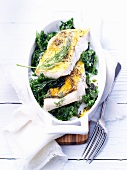 Pike perch fillets on a bed of herbs