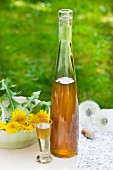 Bottle and glass of dandelion flower liqueur