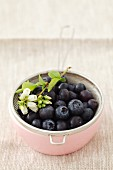 Blueberries in a sieve in a bowl