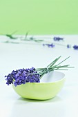 A bunch of lavender in a bowl