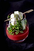 Watermelon soup with mozzarella and cress