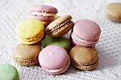 Assorted pastel-coloured macaroons