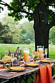 A table laid for a meal with sparkling wine and orange juice, under a tree