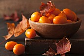 A still life featuring kumquats and autumn leaves