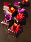 Chocolates with rose petals
