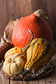 Autumn nature concept. Fall fruit on wood.