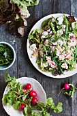 A Cous Cous Salad with Radish, String Beans, Feta and Parsley