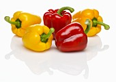 Five peppers (red, yellow)