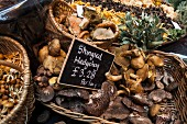 Fresh shingled hedgehog mushrooms in a basket at the market