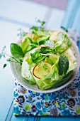 Lettuce with cucumbers, nectarines and herbs