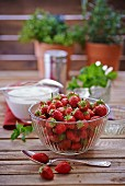 Fresh strawberries in a glass bowl, fresh herbs, cream