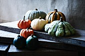 Assorted types of squash on a wooden board