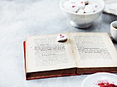 Pfeffernüsse (spiced soft gingerbread from Germany) with an old cookery book