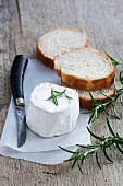 Goat's cheese, rosemary and slices of white bread
