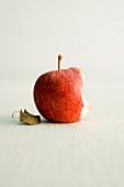 A Royal Gala apple, partly eaten