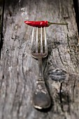 Smoking red hot chili pepper on vintage fork over wooden background