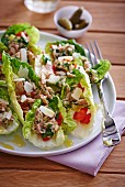 Lettuce with tuna, peppers and parmesan