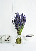 A bunch of lavender