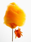 Orange candy floss and a jelly spider