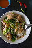 Vietnamese noodles with herbs and spring rolls