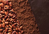 Cocoa beans, cocoa powder and chocolate