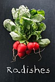 Radishes on a chalkboard above the word 'Radishes'