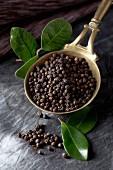 Black peppercorns in a measuring spoon