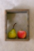 An apple and a pear in a wooden frame