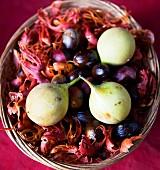 Nutmegs, nutmeg flowers and nutmeg fruits