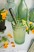 Apple and cucumber juice garnished with fennel leaves