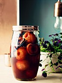 Marinated plums with anise, vanilla, cinnamon and rum in a preserving jar